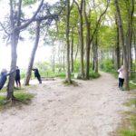 Nordic Walking im Wald